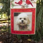 Flagology's Personalized Photo Flags