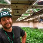 Honest Marijuana Company's Head Grower On Maintaining A High Price Per Pound, Future of Industry