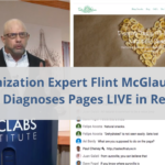 Optimization Expert Flint McGlaughlin Rapidly Diagnoses Pages LIVE in Real-Time